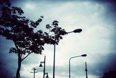 emotional convey of tree Community Picture, Street Lamp, Wind Turbine, Explore, Street Lights, Exploring