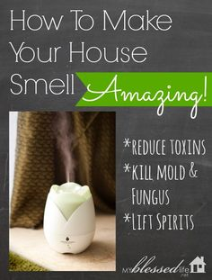 How To Make Your House Smell Amazing