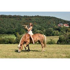 Instagram media by x.allegra.x - And i play this melody until you start sleeping💋🔥 . #bso_bw#sattel #trense #knoti #halsring #hafi #hafistute #haflinger #haflingerstute #pferd #caballo #horse trian #krämer #dressage #dressur #showjumping #springen #springreiten #bodenarbeit #horsemanship #horseman #fff #lfl #sfs #sie #verliebt #steigen #pferdepost_kleinacc #bp_post #allegraunder50 #pferdepost_kleinacc #bp_post
