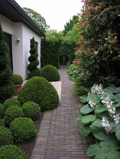 Boxwood hedges and blue flowers, a sure favorite of mine!