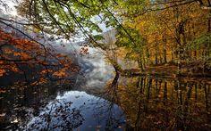 秋の風景、川、葉、木、霧、水の反射 壁紙 - 1920x1200