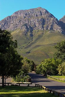 Helderberg Nature Reserve, in the Somerset West area. Walked here as a kid, rode my pony up the mountain, took my kids here . a magical place Clifton Beach, Somerset West, Namibia, Out Of Africa, Nature Reserve, Best Cities, Cape Town, Amazing Nature, South Africa