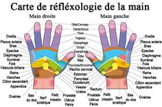 Buy Hand Reflexology Chart Description by PeterHermesFurian on GraphicRiver. Hand reflexology chart with accurate description of the corresponding internal organs and body parts. Reflexology Benefits, Reflexology Massage, Massage Benefits, Foot Massage, Meridian Massage, Oil Benefits, Massage Oil, Health Benefits, Essential Oil On Feet