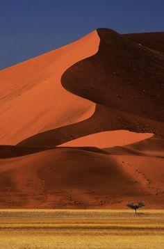 Big Dune Lone Tree, Sossusvlei, Namibia, Africa - The Namibia sand dunes are the tallest in the world. Places To Travel, Places To See, Places Around The World, Around The Worlds, Beautiful World, Beautiful Places, Paises Da Africa, South Africa, Chobe National Park