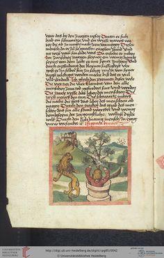 Cod. Pal. germ. 85: Antonius von Pforr: Buch der Beispiele (Schwaben, um 1480/1490), Fol 17v