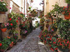 Via Camillo Benso Conte di Cavour, Spello, Italy   #Spello #Italy #Maladeviagem