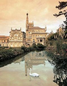 Bussaco Palace Hotel, Luçao, Portugal