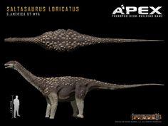 Saltasaurus loricatus by Herschel-Hoffmeyer on deviantART