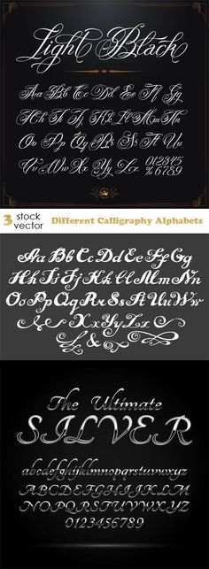 Vectors - Different Calligraphy Alphabets . Best Picture For Calligraphy diy For Your Taste You ar Tattoo Lettering Styles, Hand Lettering Fonts, Creative Lettering, Graffiti Lettering, Typography Fonts, Lettering Tutorial, Handwriting Fonts, Penmanship, Monogram Fonts
