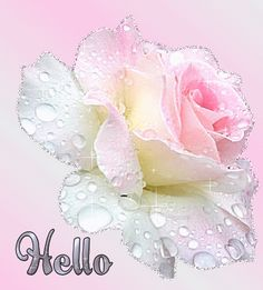 Welcome to my comment board Beautiful Fantasy Art, Beautiful Roses, Hello Beautiful, Hello Quotes, Funny Emoji Faces, Hello Goodbye, Emoji Love, Happy Friendship Day, Rose Of Sharon
