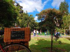 Brownie al parque  Los esperamos en el park way! #brownieriaambulante#brownieriamorenobrownie#brownies#browniescontoppings#reposteríaartesanal#reposteriabogota#repostería#saturday#fun#parque#foodbike#bike#emprendimiento#motivacion#felicidad#bogotá#teusaquillo#colombia