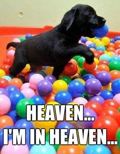 Heaven...