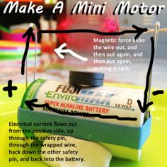 TaughtByGrace - make a mini motor, dissect a battery and harvest it's components, explore circuitry schematics. Simple Circuit, Alkaline Battery, Teaching, Circuits, Mini, Awesome, Harvest, How To Make, Science