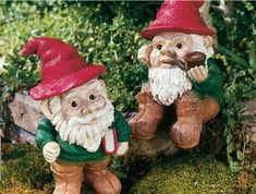 Garden gnomes make me happy <3  FYI:  These two are named David and Nobbin, and they live on my bookcases.