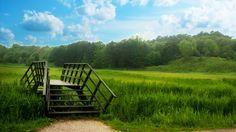 A passage on grass