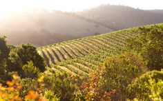 The Perfect Three-Day Weekend in Napa Valley