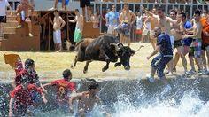 «bous a la mar». Denia. Alicante. España