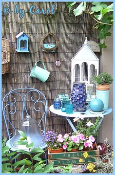 Beautiful blue corner.  Love the chair.