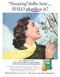 Halo - 19530413 Life