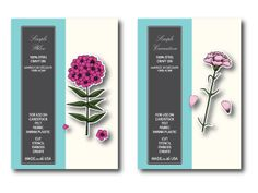 Brand new 2014 exclusive Memory Box stamps/dies sets at Simple Pleasures, CO. Carnation Set and Phlox Set. Email us at mailings@simplepleasuresstamps.com to order!