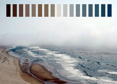 tan blue colors brown light blue beige dark blue color palette dark brown natural palettes