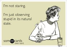 I'm not staring. I'm just observing stupid in its natural state. | Confession Ecard | someecards.com
