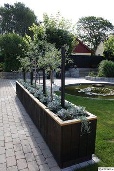 Pergola Garden, Outdoor Pergola, Outdoor Planters, Outdoor Gardens, Large Garden Planters, Garden Architecture, Diy Garden Decor, Front Yard Landscaping, Garden Inspiration