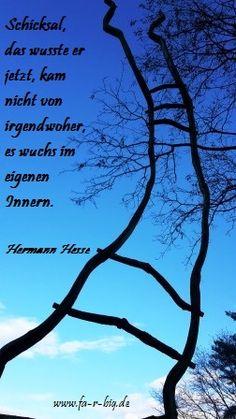Worte die mich bewegen, Text von Hermann Hesse, Foto von Alexandra Fabig, www.fa-r-big.de