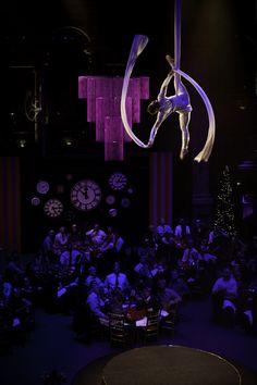 Dream - Aerial Silks & Hoop