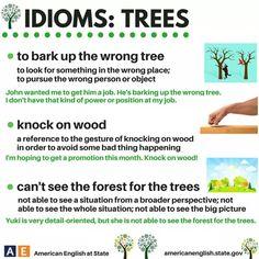Idioms : TREES #learnenglish