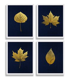 Items similar to Gold Foil Prints Leaf Art Prints Elegant Decor Living Room Art Navy Modern Art Maple Leaf Sycamore Elm Aspen Leaves Gold Print Library Decor on EtsyThis would be fun to do in jewel toned backgrounds and silver leaves. Gold Foil Print, Foil Prints, Art Prints, Impression Feuille D'or, Feuille Aluminium Art, Art Feuille D'or, Art Pour Salon, Gold Leaf Art, Ideias Diy