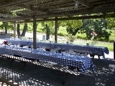 picnic wedding reception | picnic arbor a lovely picnic area shaded by a wisteria covered pergola ...