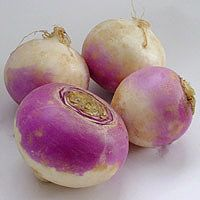 turnips are so under-appreciated as a delicious vegetable. wash one off, slice it up, and eat it raw. yum!