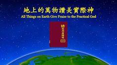 【福音視頻】經歷詩歌《地上的萬物讚美實際神》