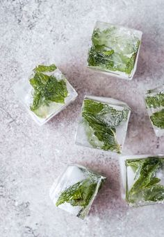 Mint ginger lemon ice cubes