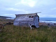 Gammelt båthus i Finnmark