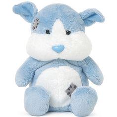 Fudge the Guinea Pig - My Blue Nose Friend