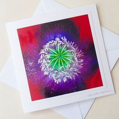 Close up of the gorgeous colours at the centre of this poppy, ideal for any occasion Flower Photos, Landscape Photographers, Thank You Cards, Poppy, Centre, Birthday Cards, Colours, Craft, Flowers