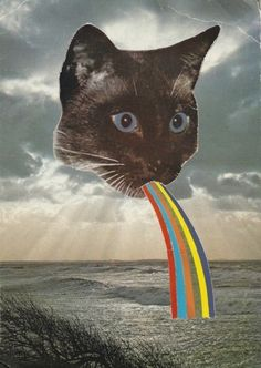 Vomitando arco-íris