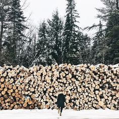 Go explore. What wintery wonderland are you heading to this holiday season? : @abbycapalbo