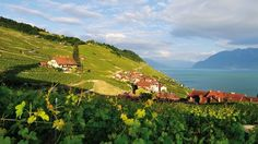 Lake Geneva Region - Switzerland Tourism