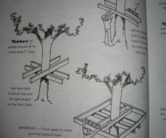Tree houses are one of idyllic childhood symbols. A special place, away from parents and school, that is just your own. It's not hard to see why it's an idea that's persisted for generations. But actually building the tree house isn't kids' work. Outdoor Projects, Home Projects, Backyard Projects, Tree House Plans, Tree House Designs, Play Houses, Kid Tree Houses, Pallet Tree Houses, Cool Tree Houses For Kids