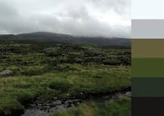 Turfprojects.ie Irish Landscape Colour Palettes Torc Kerry Design Inspiration