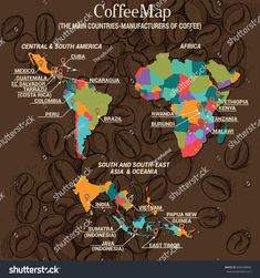 Vector infographic concept: Coffee Map: The main countries-manufacturers of coffee: Central & South America; South and South-East Asia & Oceania Java Tea, Coffee Origin, Coffee Guide, International Coffee, Coffee Infographic, World Map Wall Art, Best Coffee Shop, Coffee Roasting, Cartography