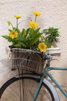 southern france bike with basket - Google Search