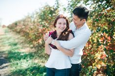 Homestead Farm Apple Picking Engagement Session // alison dunn photography