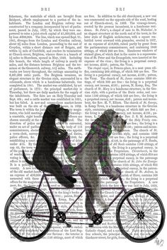 Schnauzer Tandem, Print BG by Fab Funky is printed with premium inks for brilliant color and then hand-stretched over museum quality stretcher bars. 60-Day Money Back Guarantee AND Free Return Shipping.