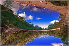 Green Loch. Scotland.