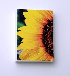 Yellow Sunflower Decor Raindrops Kitchen Art by hockmanphotography, $50.00