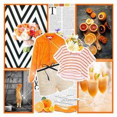 """Orange"" by winala ❤ liked on Polyvore featuring Paul & Joe, J.Crew and Rebecca Minkoff"